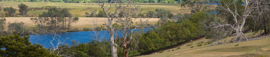 A lake, surrounded by bushland.